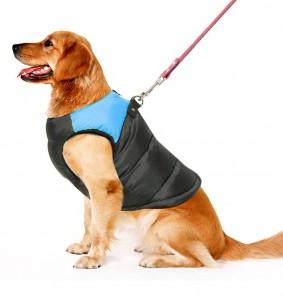 PAWZ Road Pet Clothes