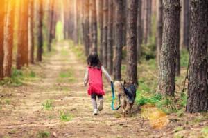 walking dog on leash