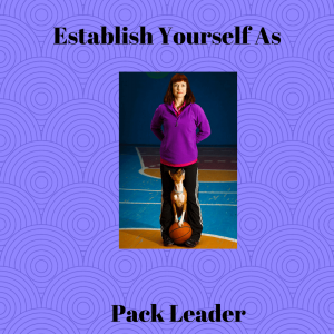 Establish Yourself as Pack Leader